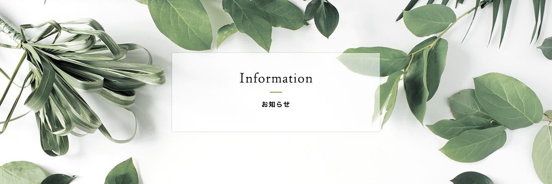 キャンペーン&新製品情報