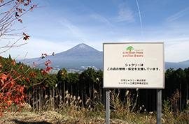 富士山麓での植樹活動